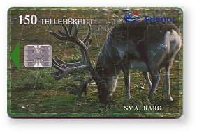 N-141 Svalbard reinsdyr -091 -  150ts